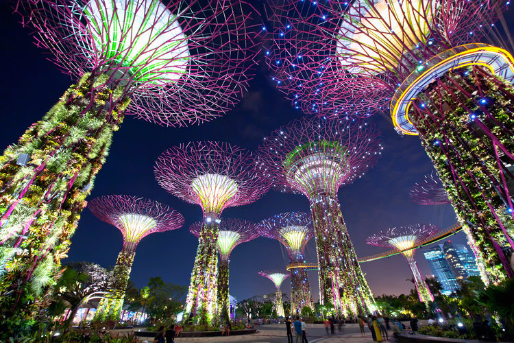 Supertree Grove at Gardens By The Bay, Singapore - for that luxury travel experience