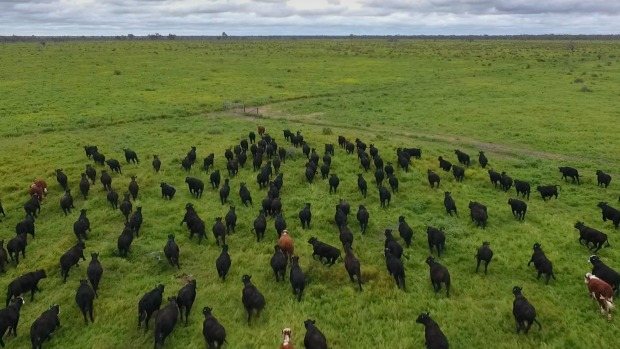 Farm Property Values on the Rise Across Australia in Early Spring